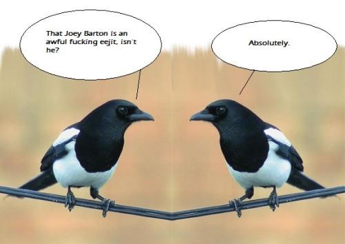 Magpies discuss Barton future